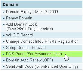 DNS Panel